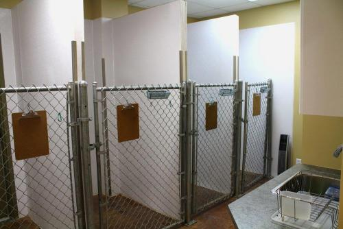 Southpointe - Kennels